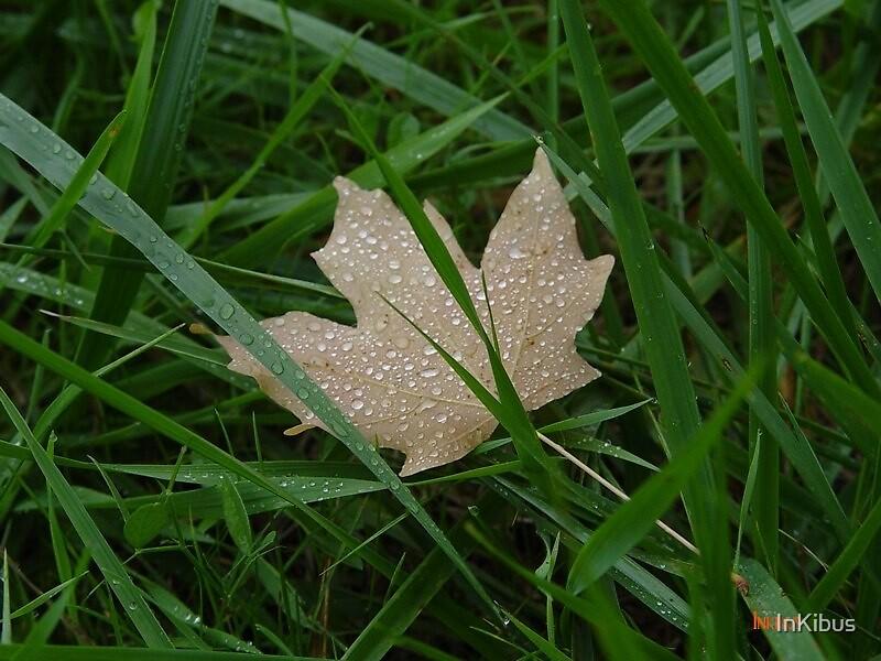 Star Leaf by InKibus