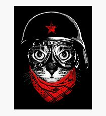 Pilot Cat Photographic Print