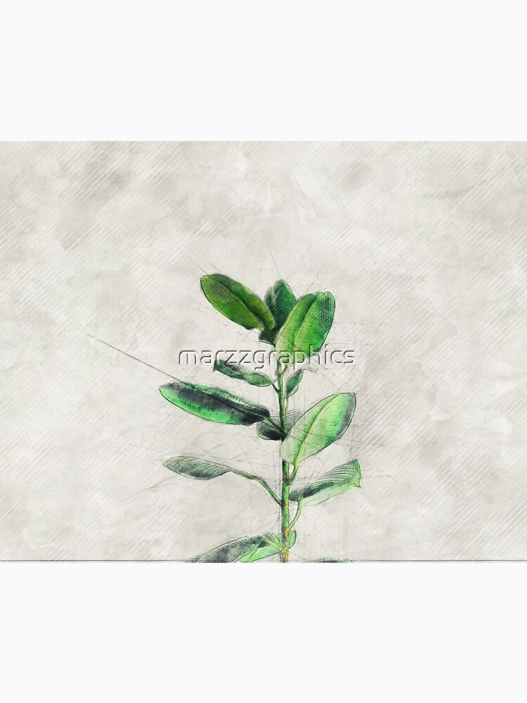 Ficus Art, Rubber Plant, Green Leaf Art, Rubber Fig, Pipal, Ficus