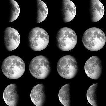 Carmilla Moon Cycle by AnnieKress