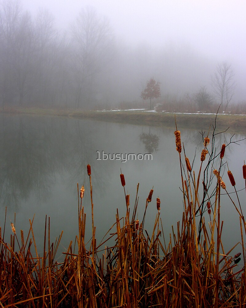 foggy reflections by 1busymom