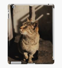 Mia the cat II iPad-Hülle & Skin