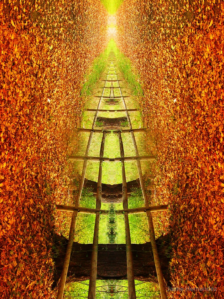 """""""The Bridge"""" by Jaime Hernandez"""