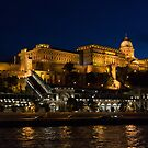 Buda Castle from the Danube by Tom Gomez