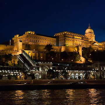 Buda Castle from the Danube by tomg