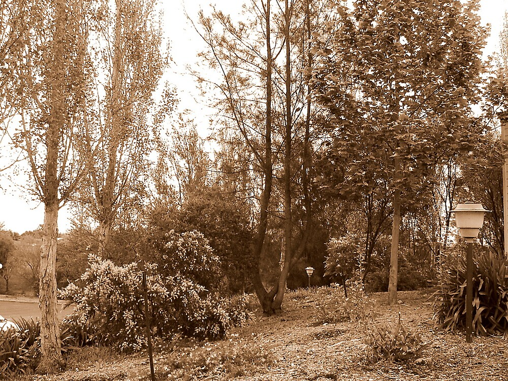 SEPIA SHOT. by the6tees