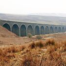 The Dandry Mire/Moorcock Viaduct by Christine Smith