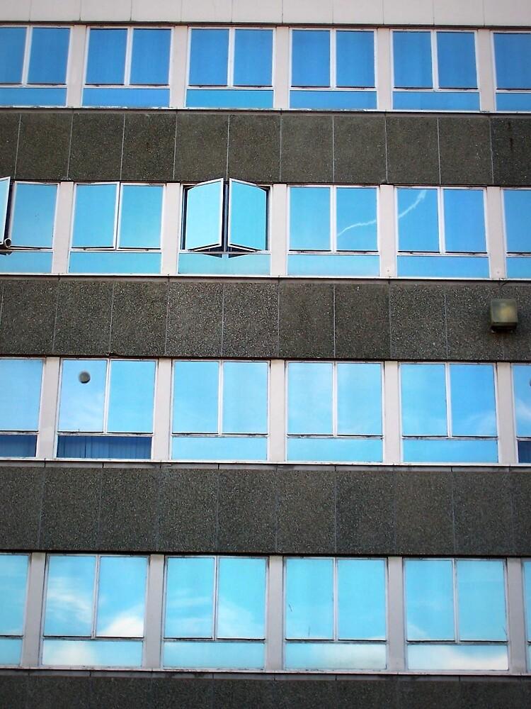 Windows in Wales by Shannon Byous Ruddy