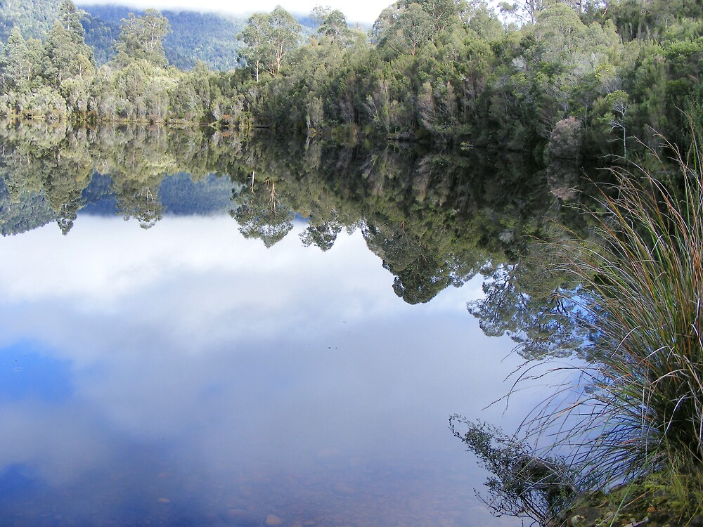 Lake Rosebery,  at Tullah - yet another stunning morning image here by gaylene