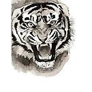 Mad Tiger by Ciara Barsotti