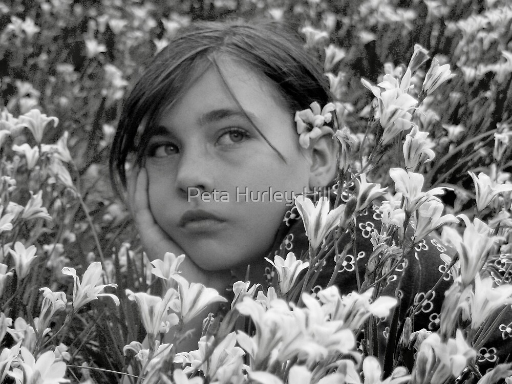 black and white daisy by Peta Hurley-Hill