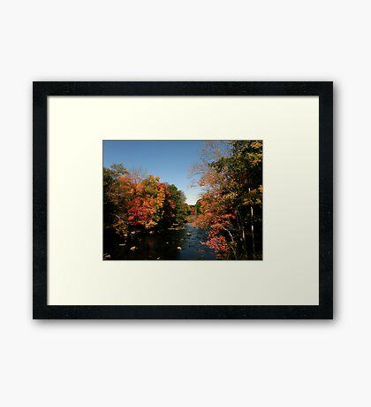 New Hampshire Foliage 2008 #6 Framed Print
