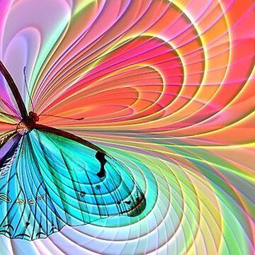 Butterfly Swirls by dorcas13