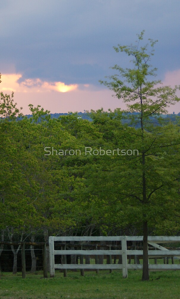 Spring Sunset by Sharon Robertson