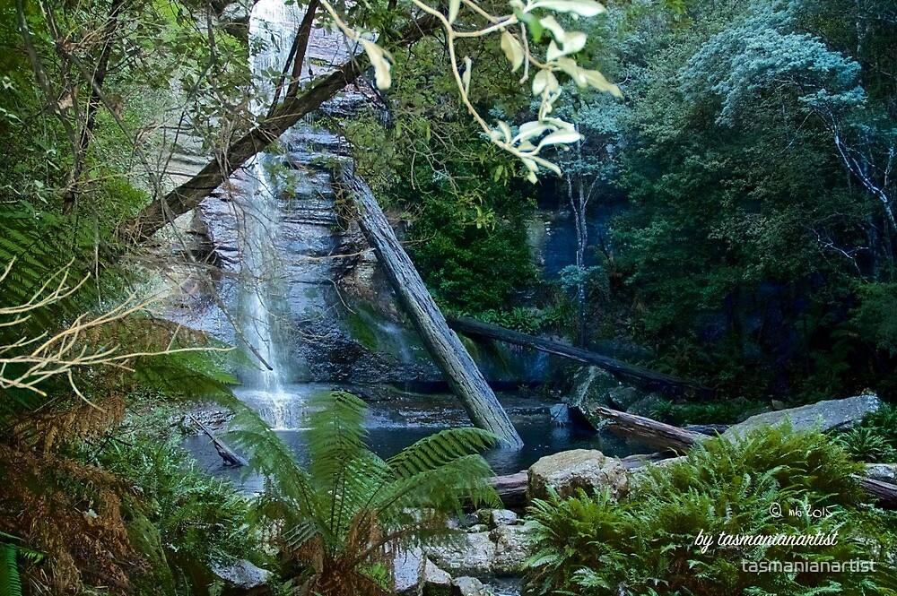 SCENES & SCENERY ~ Snug Falls and Pond by tasmanianartist by tasmanianartist