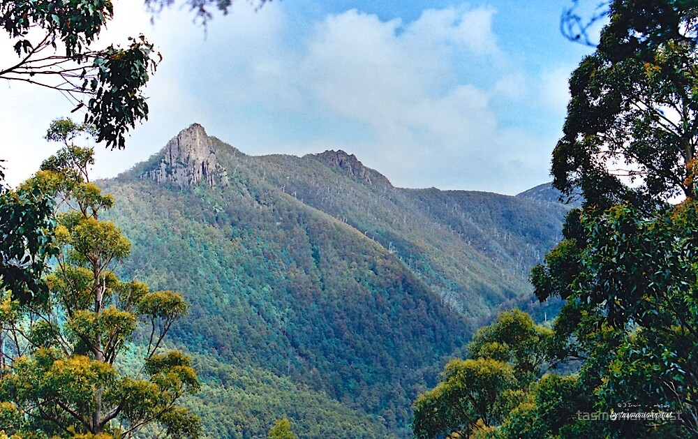 SCENES & SCENERY ~ Cathedral Rock and Montagu Thumbs by tasmanianartist by tasmanianartist