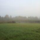 Foggy Morning Field by silverdragon