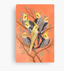 Cockatiel Fun Canvas Print