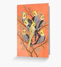 Cockatiel Fun Greeting Card