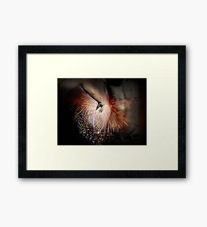 The Spark Of Creation Framed Print