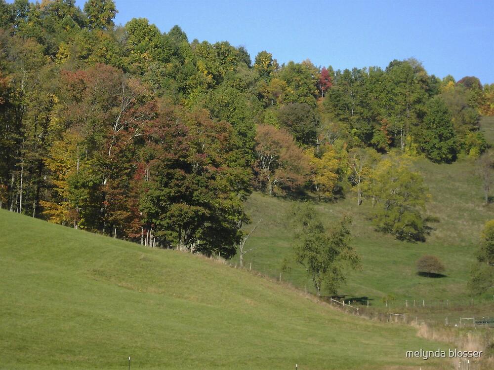 fall started by melynda blosser