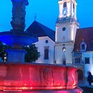 Bratislava Square by DES PALMER