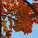 Fall Mosaic #5 by Tammy F