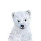 Kleiner Eisbär von Amy Hamilton