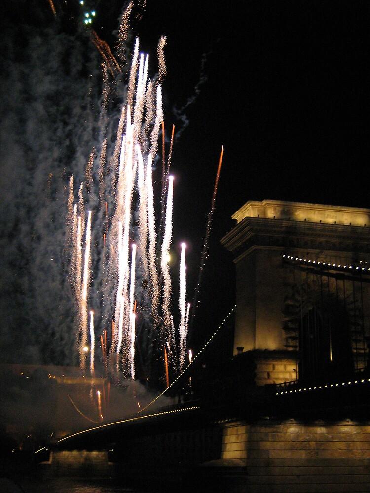 fireworks by gabriella hansen