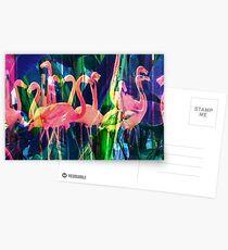 Flamingo-Tanz Postkarten