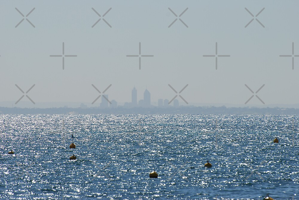 Landscape of Perth City by Michelle *