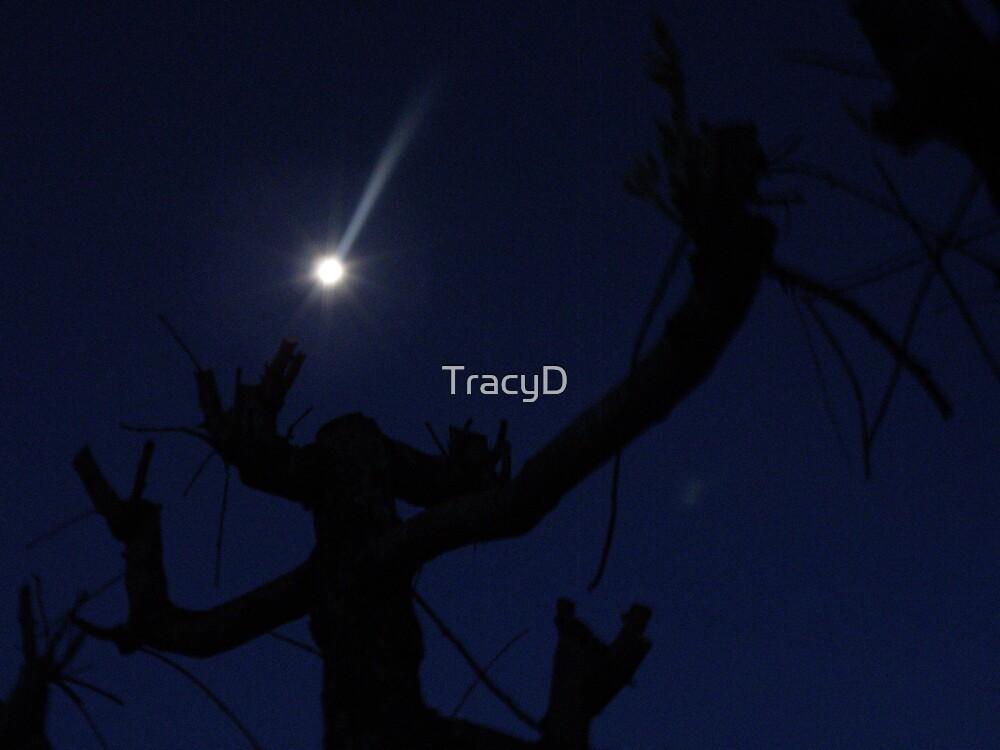 Deep Blue! by TracyD