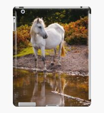 Equine Reflections iPad Case/Skin