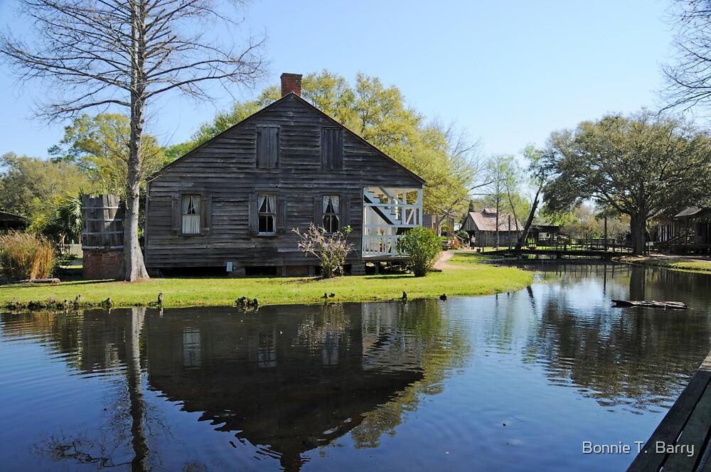 Vintage Village by Bonnie T.  Barry