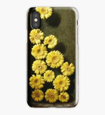 Yellow Flowers in Sandstone Trough 	 iPhone Case