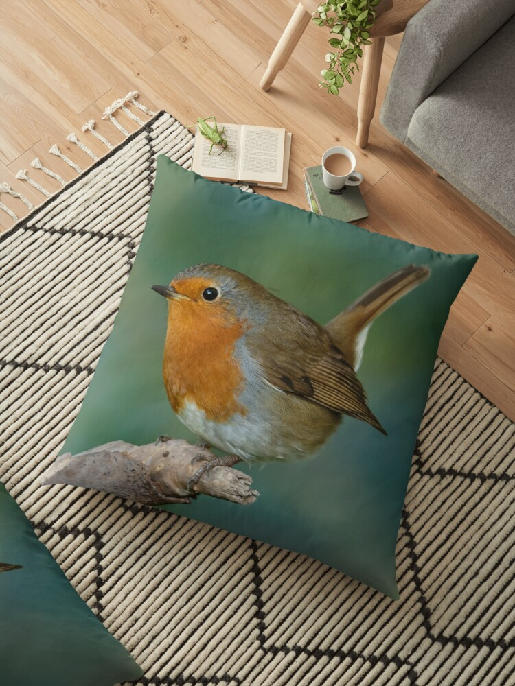 Perky Robin by Dave  Knowles