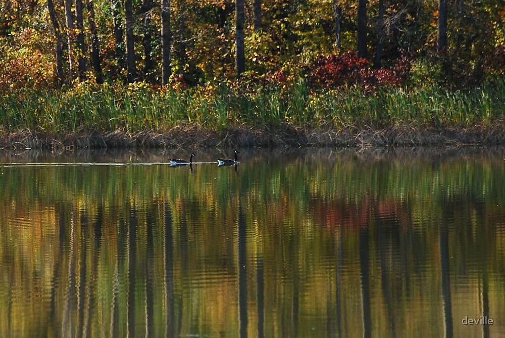 beauty on Innis lake by deville