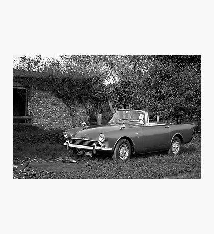 Sunbeam Alpine Photographic Print