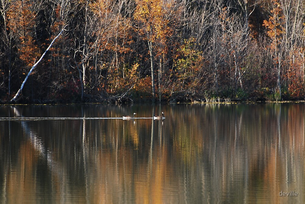 peace and beauty on Innis Lake by deville