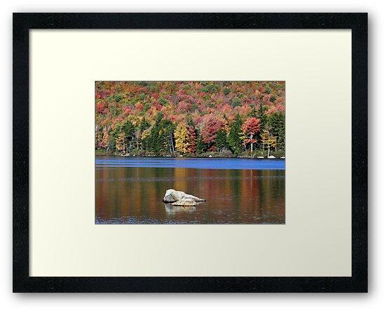 New Hampshire Foliage 2008 #7 by Len Bomba