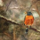 American Robin In The Snow by Lois  Bryan