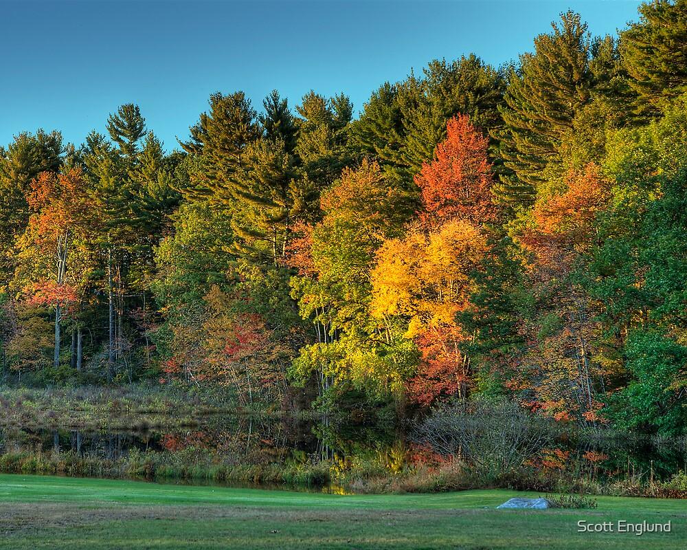 Foliage by the pond  Salem,New Hampshire  by Scott Englund