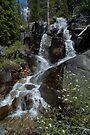 Yosemite Waterfall by photosbyflood