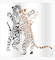 Playful tiger cubs version 2 Poster