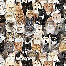 Catmina 2017 - THREE by jimiyo