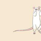 Shy Little Rat by ChelseaPray
