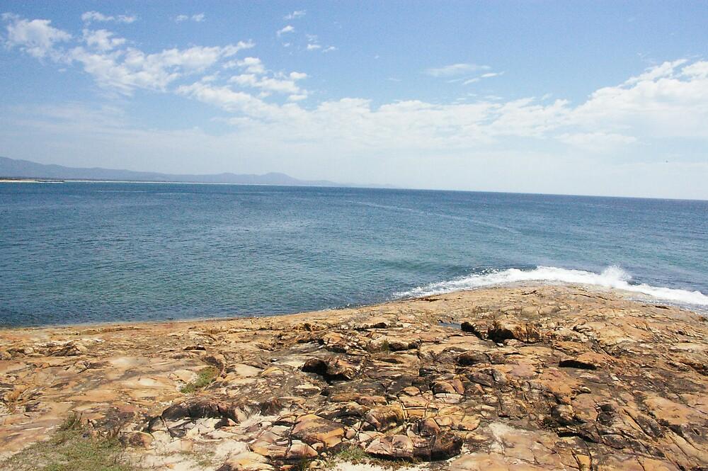 South West Rocks, NSW by kristy m