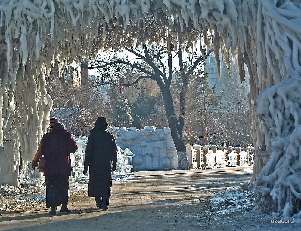 Walking in a Winter Wonderland by ozecard