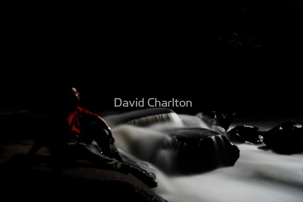 River Spirit, Aire River Crossing, Otways NP, VIC. Australia by David Charlton