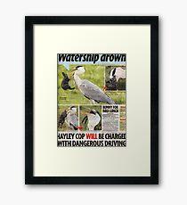 Hungry Heron 1 Framed Print